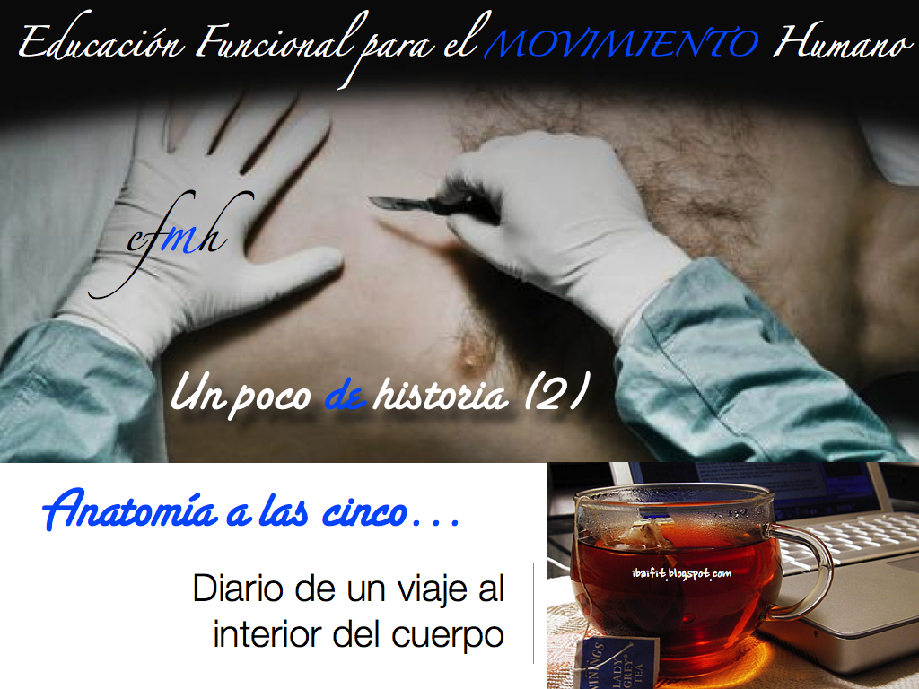 007_Historia_Medicina_Anatomia_ibaifit