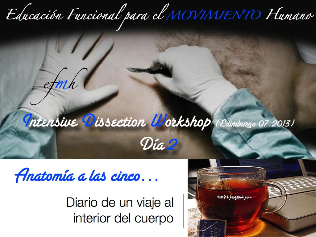 Anatomi-CC-81a_a_las_cinco.011