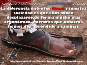 Educación Funcional para el Movimiento Humano_Marcha_Humana_y_Evolución.002