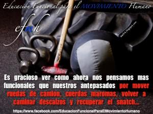 Educación Funcional para el Movimiento Humano_Marcha_Humana_y_Evolución.005