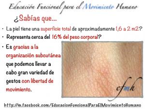 Educacion_Funcional_para_el_Movimiento_Humano_PIEL_001