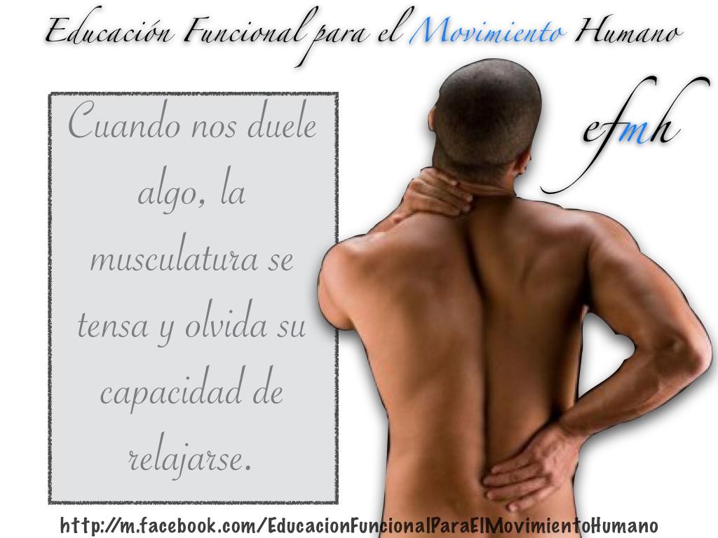 Educacio-25CC-2581n-Funcional-para-el-Movimiento-Humano_Marcha_Tensio-25CC-2581n_001