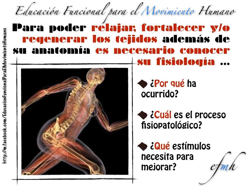Por qué debemos conocer la anatomía y fisiología de los tejidos ...