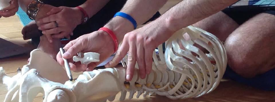 espalda-fascia