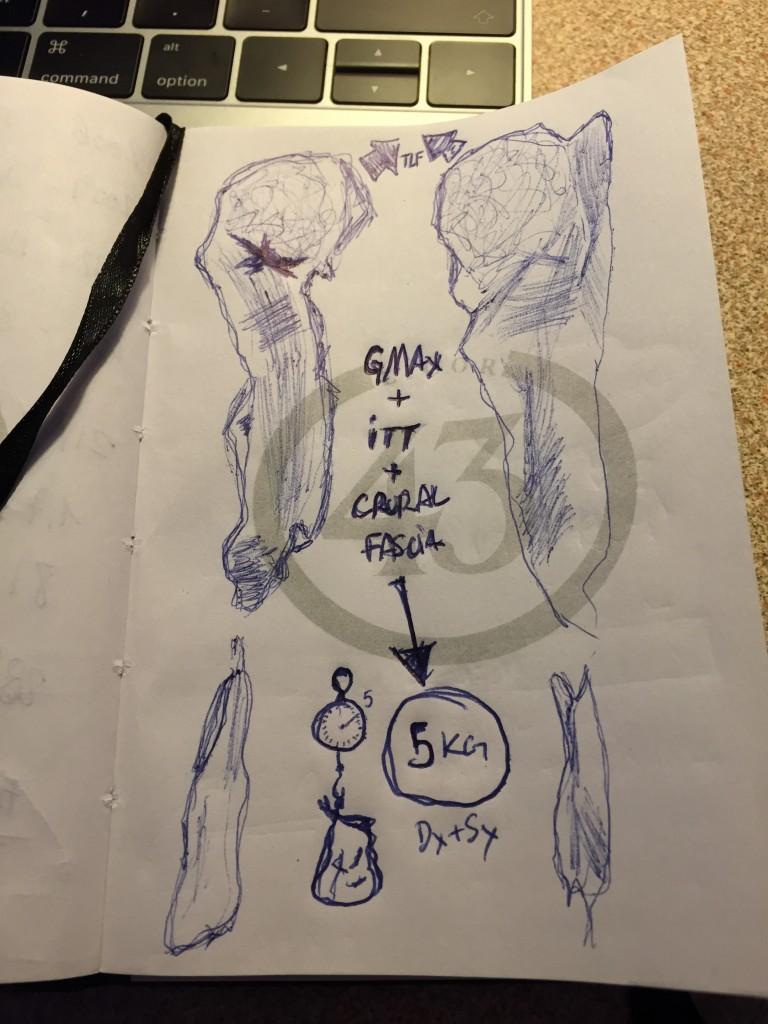 GMax + ITT + Crural Fascia. Dibujo Ibai López