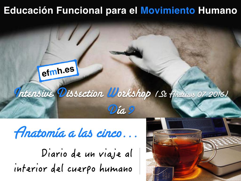 Intensive Dissection Workshop | EFMH.ES